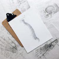 Kość krzyżowa a bóle głowy, krzyża i kości ogonowej
